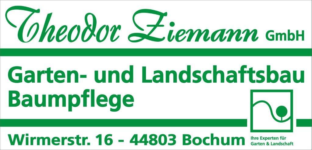 ZIEMANN_LOGO (2)